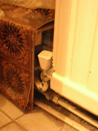 Manor Court Hotel : Sous le lavabo