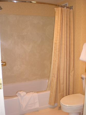 Residence Inn Las Vegas Hughes Center : Shower view