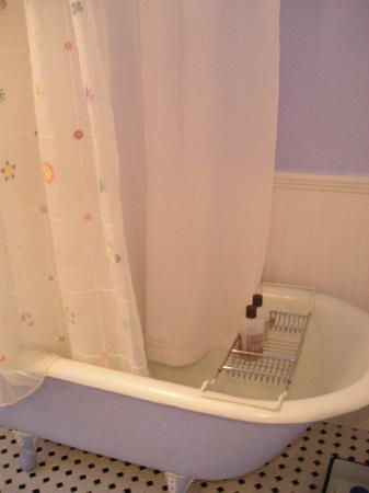 Phoenicia Belle: custom painted tub