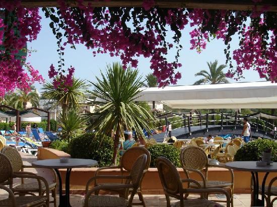Insotel Cala Mandia Resort & Spa: jardin