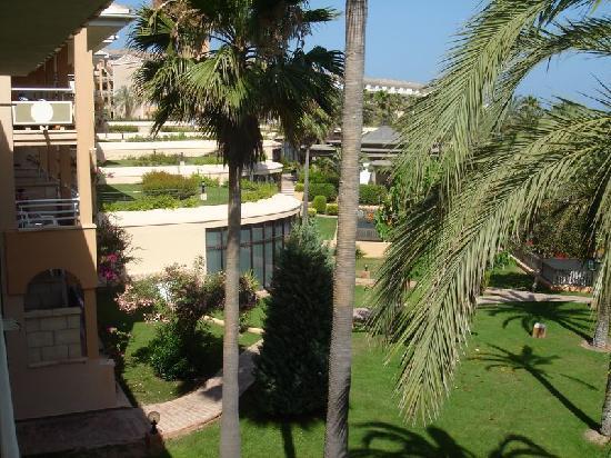 Insotel Cala Mandia Resort & Spa: Vistas desde la habitación