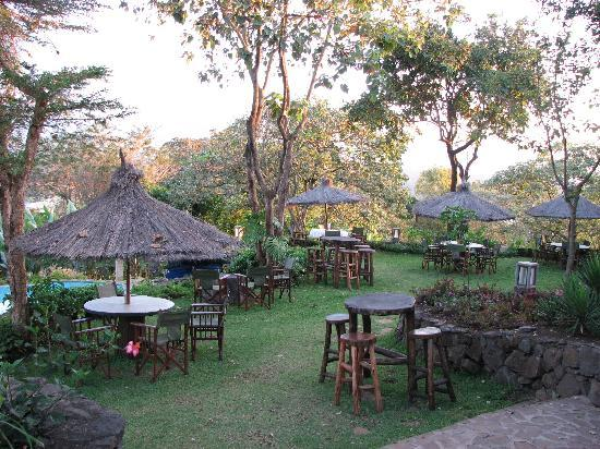 Kigongoni Lodge: the terrasse in the early morning