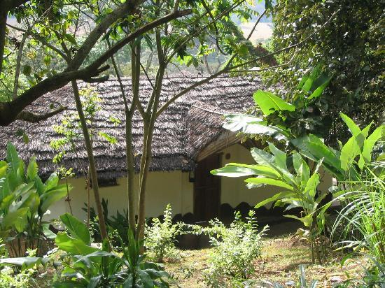 Kigongoni Lodge: our bungalow