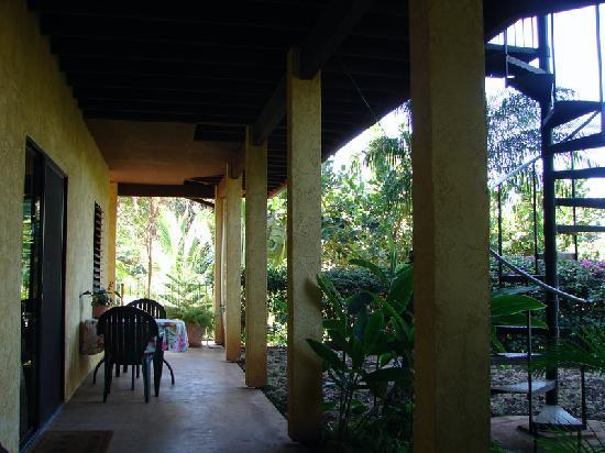 Hale Huanani Bed and Breakfast: View of studio walkway from outside.