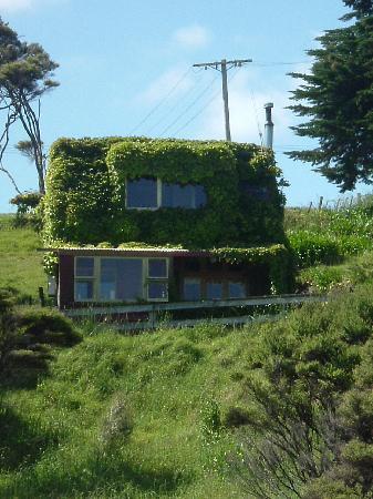 Solscape: Ivy Cottage