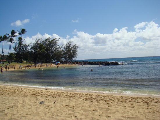Поипу, Гавайи: Poipu Beach