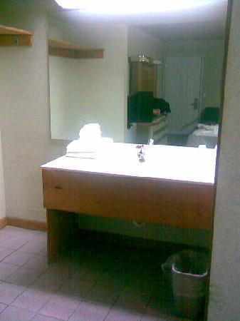 Royale Inn: nice plywood sink