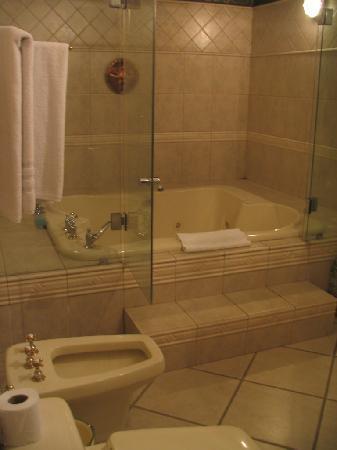 Posada de Los Leones: Master Bath I