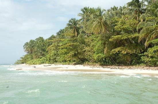 La Loma Jungle Lodge and Chocolate Farm: Arriving at one of the Zapatillas Islands