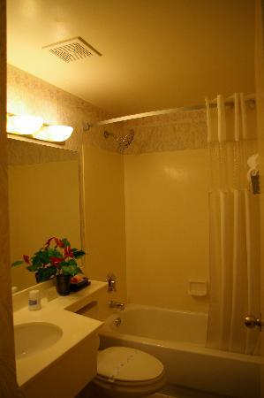 Flushing Central Hotel: Very clean bathroom (not the sani strip!)