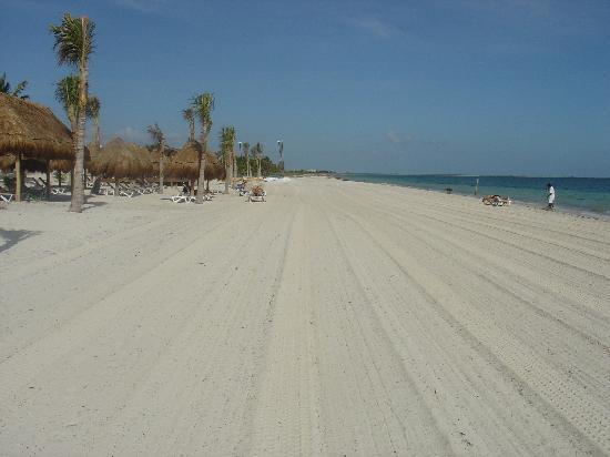 Excellence Playa Mujeres: Beach After Tractor Cleanup