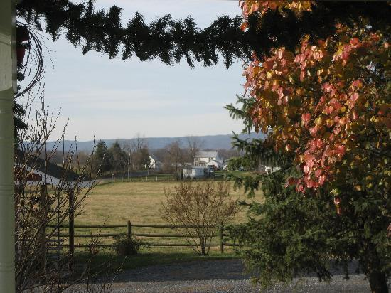 Piney Hill Bed & Breakfast: View from Porch