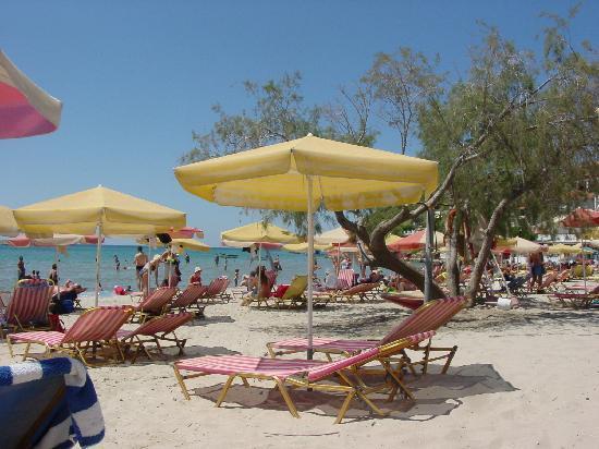 Psiliamos Beach Picture Of Samos Northeast Aegean
