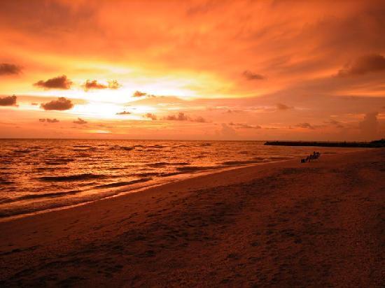 Isla de Sanibel, FL: Sanibel Island 1