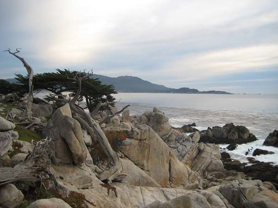 Monterey, Californien: 17 Mile Drive