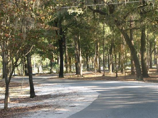 Spirit of the Suwannee Music Park: Road Going to The River
