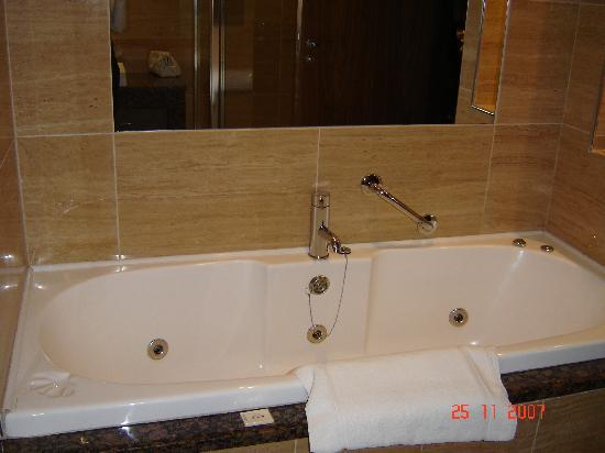 Westport Plaza Hotel: Jacuzzi Bath