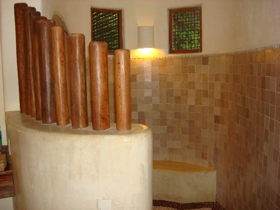 Hotel Cinco Sentidos: Shower