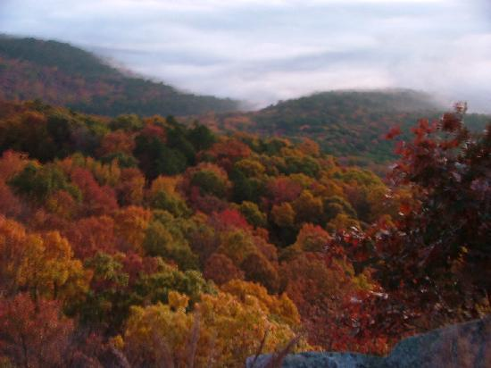 Dardanelle, Арканзас: Awesome Fall colors
