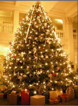 The Omni Homestead Resort: The Great Hall Christmas Tree (2007)