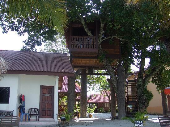 Malibest Resort: Treetop house