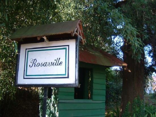 Rosaville: The Entrance
