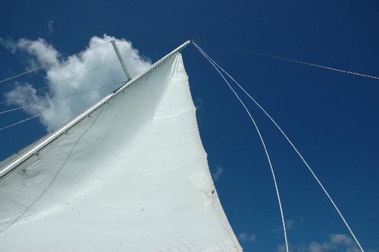 Galley Bay Resort : Just liked this shot