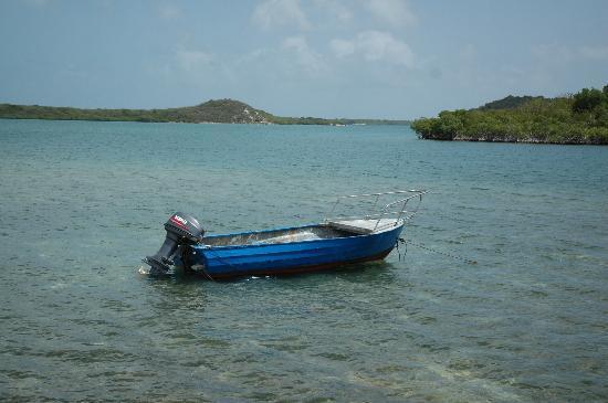 Galley Bay Resort : Boat