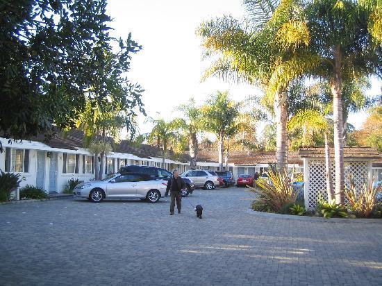 Marina Beach Motel: Il piazzale del motel