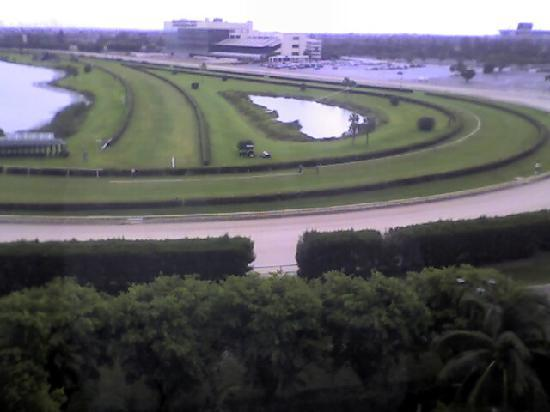Stadium Hotel: View of the track