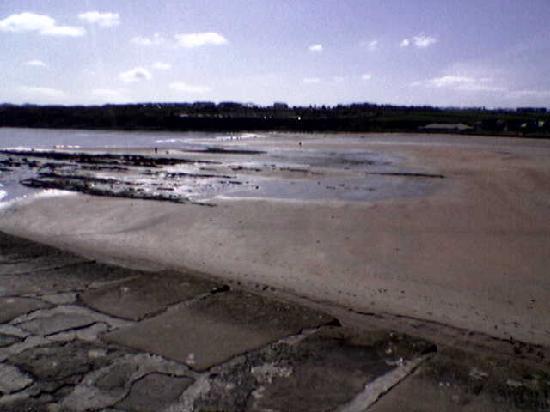 St. Andrews Bay Golf Resort: The beach at St Andrews