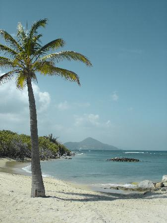 Nisbet Plantation Beach Club: view over to St. Kitts