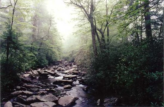 Great Smoky Mountains National Park, TN: Alum Cave Trail