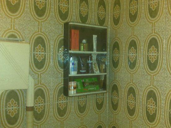 Hotel Diplomate: Bathroom 1