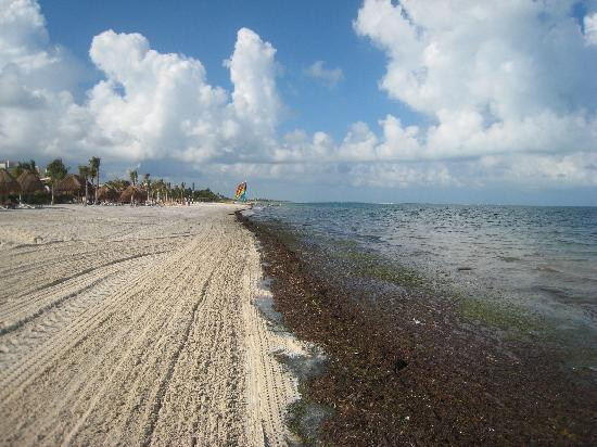 Excellence Playa Mujeres: EPM Beach