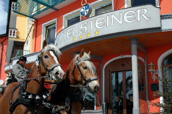 Hotel Steiner: Brides Transport to Wedding