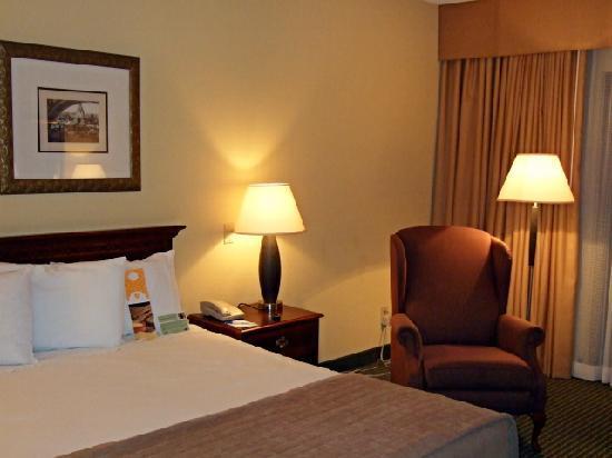 Holiday Inn Las Colinas: King room