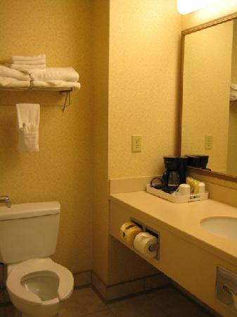 Country Inn & Suites By Carlson, London South, ON: bathroom