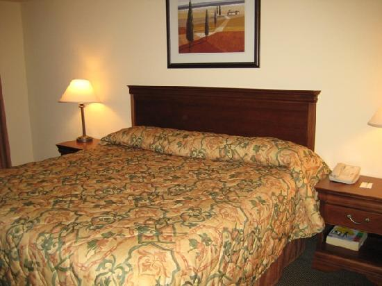 Country Inn & Suites By Carlson, London South, ON: bedroom