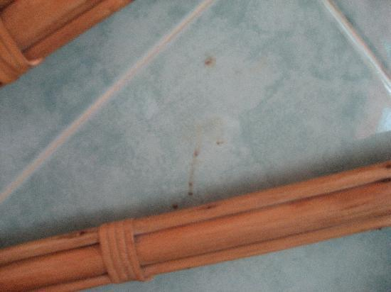 Phi Phi Don Chukit Resort: The stain above our bed