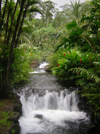 Arenal Volcano National Park, Costa Rica: Hot springs !!!