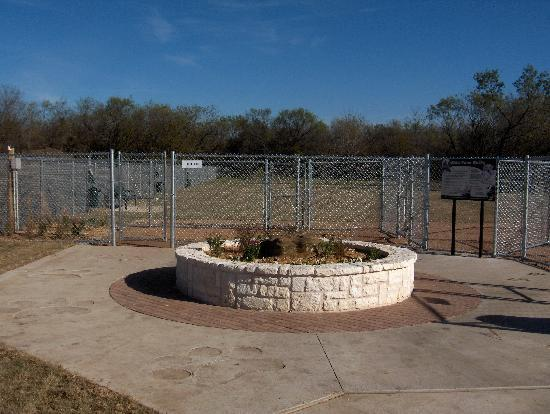 Tails and Trails Dog Park : Arlington Dog Park - a raised flower bed marks the separation between the two dog sections