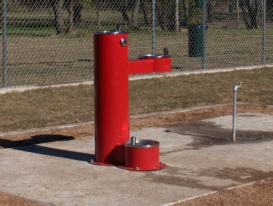 Tails and Trails Dog Park: Arlington Dog Park - water is available