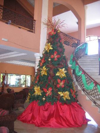 Memories Splash Punta Cana: Nice Tree..  Piano bar upstairs is really nice..