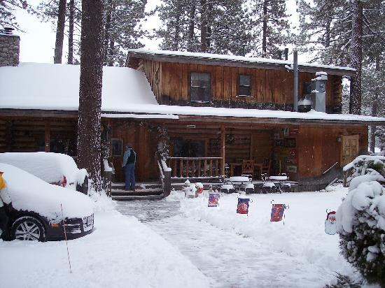 Eagle's Nest Bed and Breakfast Lodge: Rear View of the Main Cabin