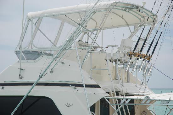 Bavaro Beach: Boats at the Punta Cana Marina