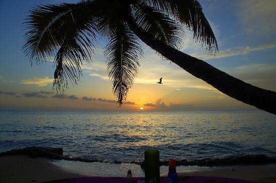 Gentle Winds Condominiums: Sunset Frederiksted