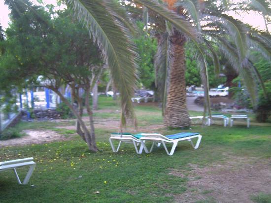 Hotel Fuerteventura Playa : vistas desde mi habitacion,bellisimas