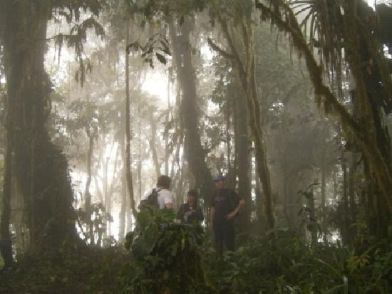 Pachijal Reserva Ecologica: The magic cloud forest at pachijal