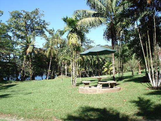 Casa Corcovado Jungle Lodge: relaxing garden by the beach